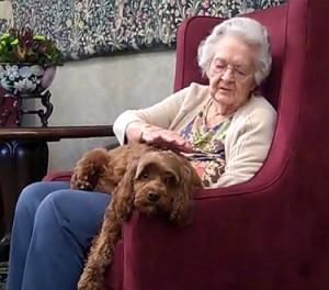 perro-hogar-de-ancianos